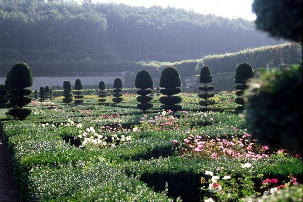 Творческая фотография: Начальный курс: www.gardenhistory.ru/page.php?pageid=72